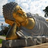 仏陀の教え-仏陀の生涯-仏陀の...